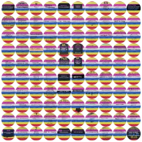 100 macarons-made-in (2015)